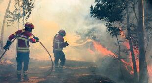 Pożar w Portugalii (PAP/EPA)